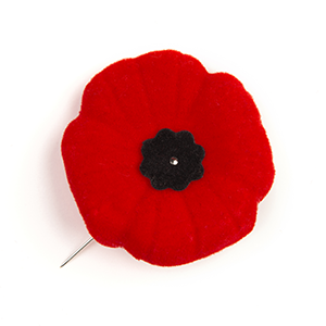 legion-history-of-the-poppy-wbg-resized.png